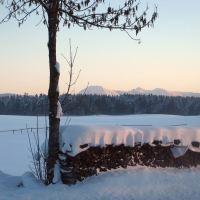 Bergblick im Winter am Woidhauserhof