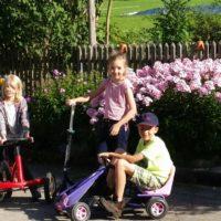Bild Woidhauserhof Kinder und Garten